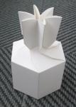 bedrukt doosje speciale vorm voor kado