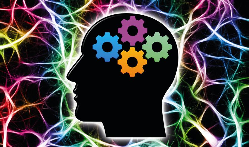 5de3e0f748d Verpakkingen & Psychologie | Bedrukte Doosjes